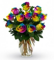 12 Rainbow Roses with baby's breath in a vase **only have 2 LEFT**