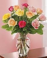 12, 18, or 24 Roses, Mixed colors Rose Special! Local Delivery Only.