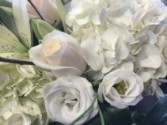 125 All white loose cut flower  bouquet  wrapped in cellophane