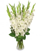 TRANQUIL LIGHT   White Gladiolus Vase in Michigan City, IN | WRIGHT'S FLOWERS AND GIFTS INC.