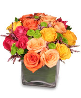 ENERGETIC ROSES Arrangement in Calgary, AB | MISTY MEADOW FLOWERS