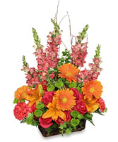 BRILLIANT BASKET Arrangement Best Seller in Eau Claire, WI | 4 SEASONS FLORIST INC.
