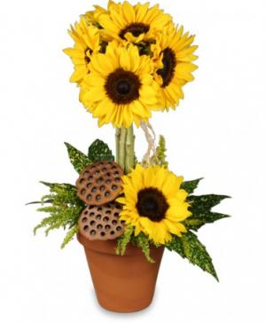 Pot O' Sunflowers Topiary Arrangement in Gladewater, TX | GLADEWATER FLOWERS & MORE