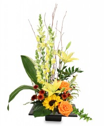 EXPRESSIVE BLOOMS Arrangement in Roanoke, VA | BASKETS & BOUQUETS FLORIST