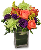 SPRING IT ON! Fresh Flowers in Ashtabula, OH | BLOOMERS FLORIST LLC