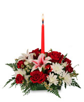 DECK THE HALLS Holiday Centerpiece in Milton, MA | MILTON FLOWER SHOP, INC