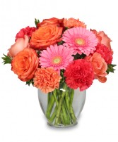 PETAL PERFECTION Flower Arrangement Best Seller in Jonesboro, AR | HEATHER'S WAY FLOWERS & PLANTS