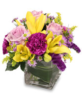 HIGH IMPACT Arrangement in Manchester, NH | CRYSTAL ORCHID FLORIST