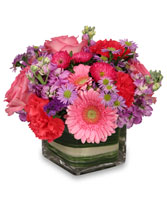 SWEETNESS OF LIFE Arrangement in Huntington, IN | Town & Country Flowers Gifts