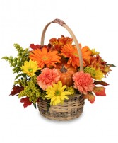 ENJOY FALL! Flower Basket in Mcleansboro, IL | ADAMS & COTTAGE FLORIST