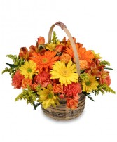 CHEERGIVER Basket in Lilburn, GA | OLD TOWN FLOWERS & GIFTS