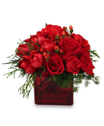 CRIMSON CHRISTMAS Bouquet in Bloomfield, NY | BLOOMERS FLORAL & GIFT