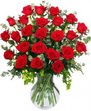 24 Radiant Roses Red Roses Arrangement in Baton Rouge, LA | FLOWER BASKET