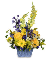 FRESH AIR Basket Arrangement in Hulmeville, PA | HULMEVILLE FLOWER SHOP