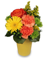 JACKPOT POSIES Arrangement in Grand Island, NE | BARTZ FLORAL CO. INC.