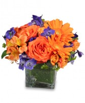 ENTHUSIASM BLOSSOMS Bouquet in Edmonton, AB | JANICE'S GROWER DIRECT