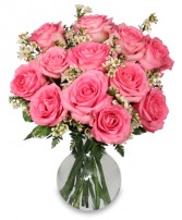 CHANTILLY PINK ROSES Arrangement in State College, PA | QUEEN ANNE'S LACE