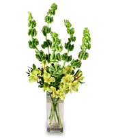 VERY VERDE Bouquet in Webster, NY | HEGEDORN'S FLOWER SHOP