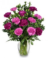 PUMP UP THE PURPLE Carnation Bouquet in Jasper, IN | WILSON FLOWERS, INC