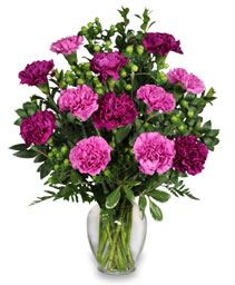 PUMP UP THE PURPLE Carnation Bouquet