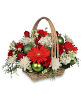 BE JOLLY BASKET Holiday Flowers in Hamden, CT | LUCIAN'S FLORIST & GREENHOUSE