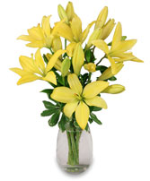 DEL SOL Lily Bouquet in Carman, MB | CARMAN FLORISTS & GIFT BOUTIQUE