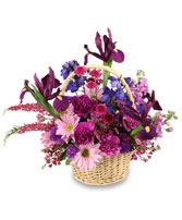 GARDEN OF GRATITUDE Basket of Flowers in Rochester, NH | LADYBUG FLOWER SHOP, INC.