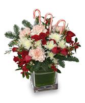 PEPPERMINT PLEASURES Christmas Bouquet in Asheville, NC | THE ENCHANTED FLORIST ASHEVILLE