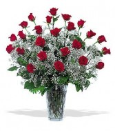 2 Dozen RED Roses Double the Babys Breath Gorgeous Vase of Impressive Red Roses