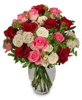 ROMANCE OF ROSES Arrangement in Worcester, MA | GEORGE'S FLOWER SHOP