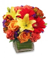 BRIGHT BEFORE YOUR EYES Flower Arrangement in Pearland, TX | A SYMPHONY OF FLOWERS