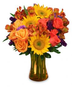 Sunflower Sampler Arrangement in Dalton, GA | Bobbie's Florist & CLC Gourmet Chocolates