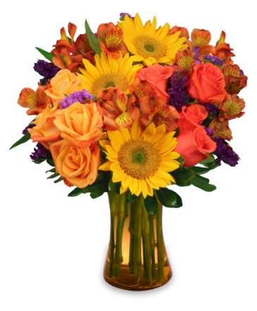 Sunflower Sampler Arrangement