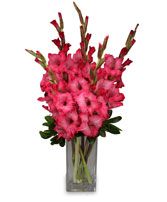 FILLED WITH GLADNESS Gladiolus Bouquet in Lemmon, SD | THE FLOWER BOX