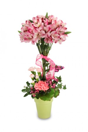 Petal Pink Topiary Bouquet
