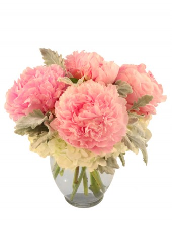 Sweet As Pie Pink Peonies