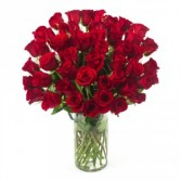 50 Red Roses in a Vase by Enchanted Florist of Cape Coral