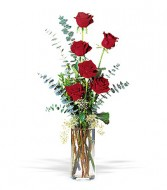 6 Red Roses with Accents