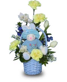 BABY BLUE BASKET Flowers for New Baby in Abbotsford, BC | BUCKETS FRESH FLOWER MARKET