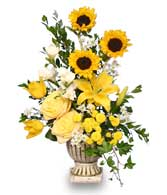 SUNLIGHT SPLENDOR Flower Arrangement