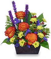 FLORAL FELICITY Arrangement