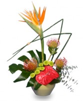TROPICAL SHOW STOPPER Floral Arrangement in Bath, NY | VAN SCOTER FLORISTS