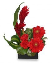 RADIANT IN RED Floral Arrangement in Aurora, MO | CRYSTAL CREATIONS FLORAL & GIFTS