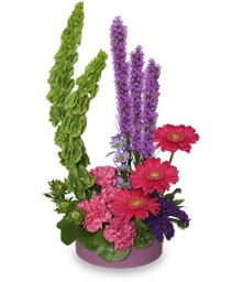 Plum Crazy Garden Arrangement