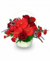 RED HOT ROMANCE Flower Basket in Hillsboro, OR | FLOWERS BY BURKHARDT'S