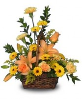 BEAUTIFUL SUNSET Basket of Flowers in Watertown, CT | ADELE PALMIERI FLORIST