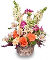 FRESH BREEZE Flower Basket in Pembroke, MA | CANDY JAR AND DESIGNS IN BLOOM