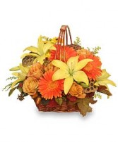 GOLDEN GRANDEUR Basket of Fall Flowers in Bath, NY | VAN SCOTER FLORISTS