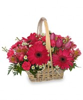 BEST WISHES BASKET of Fresh Flowers in Pembroke, MA | CANDY JAR AND DESIGNS IN BLOOM