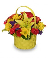 BRIGHT & SUNNY BASKET Floral Arrangement in Pembroke, MA | CANDY JAR AND DESIGNS IN BLOOM